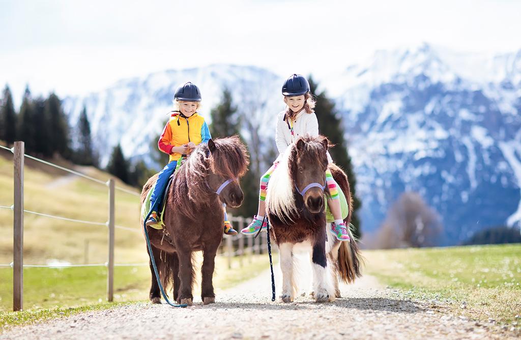 Pony – Alm am Astberg